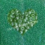 Бисер (5гр) 56100/706, зеленый (глазурованный)