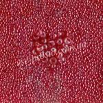 Бисер (10гр) 96070/719, красный (глазурованный)