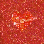 Бисер 91030/774, оранжевый