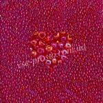 Бисер (10гр) 91070/776, красный (прозрачный радужный)